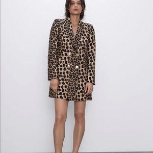 zara leopard frock coat